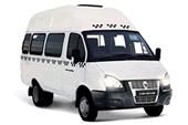 ГАЗ 3221, ГАЗ 32212, ГАЗ 32213, Луидор 225000 (Автобус)